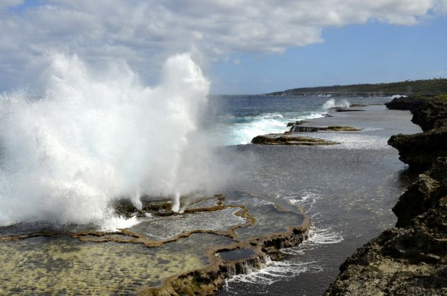 Blowholes - by Chris