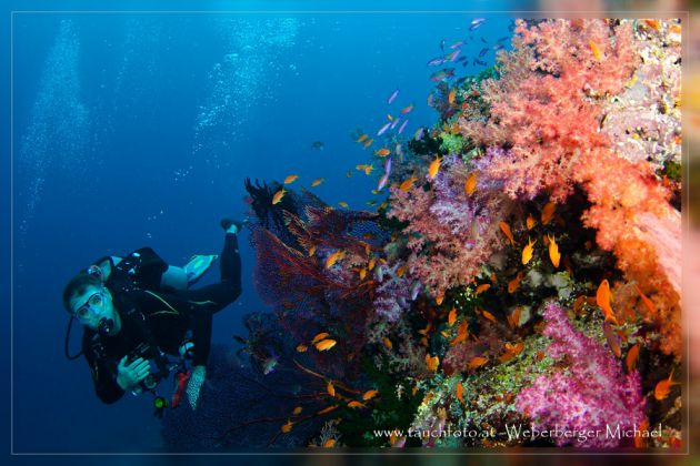 WOW - Stunning soft coral display. Thomas poses for Michael