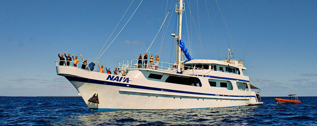 Fiji Liveaboard Diving & Tonga Whale Watching - NAI'A
