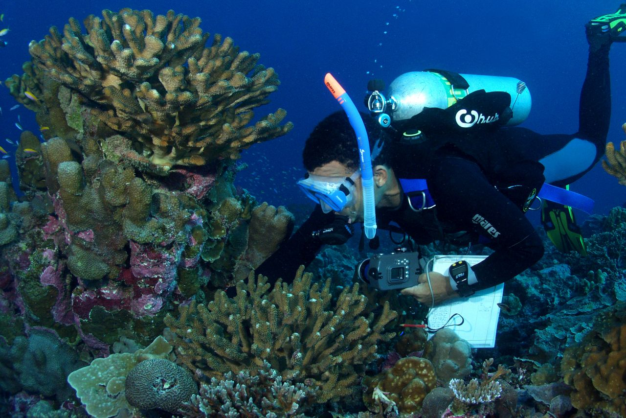 Dr. David Obura surveys coral cover at Orona, Phoenix Islands